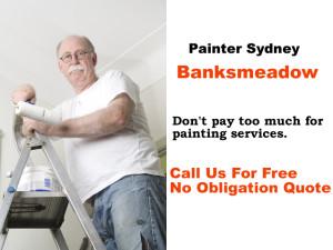 Painter Banksmeadow NSW