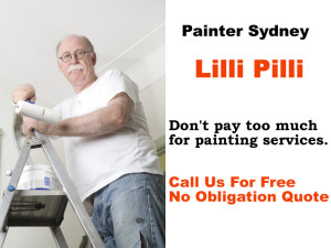 Painter in Lilli Pilli
