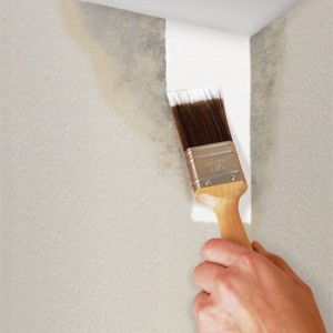 picking right paint brush